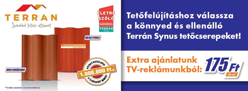 terran_synus_960x354_slidebanner